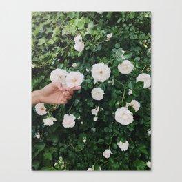 Brooklyn Flowers Canvas Print