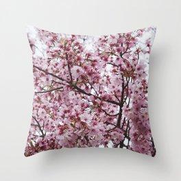 Sakura blossoms during spring, Japan Throw Pillow
