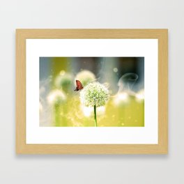 Allium fantasy flowers with butterfly Framed Art Print