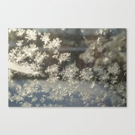 Sparkling Snow Crystals - Delicate Beauty Canvas Print
