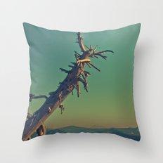 masonry  Throw Pillow