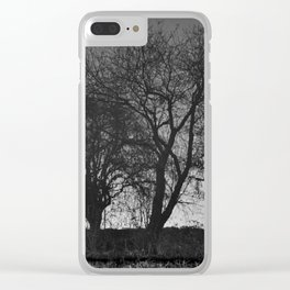 Reflection #3 - Chester canals Clear iPhone Case