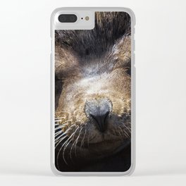 Sleepyhead Sea Lion Clear iPhone Case