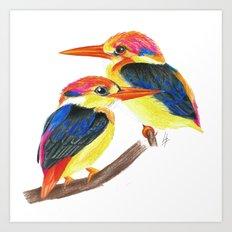 Kingfisher IV Art Print