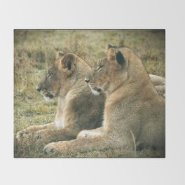 Lion Cub Twins Throw Blanket