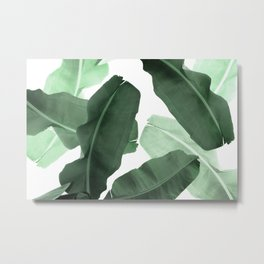 Green Banana Leaf Metal Print