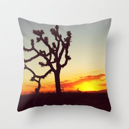 Sunset in the Mojave Throw Pillow