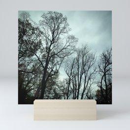 Winter Trees, Pennsylvania Mini Art Print