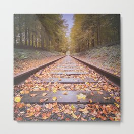 Railway in the autumn forest Metal Print