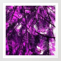 purple fir tree Art Print