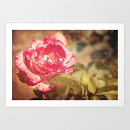 Cliche: A Rose by any other Name Art Print
