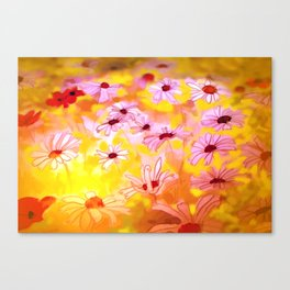 Summer Meadows Canvas Print