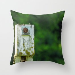 The Home is a Nest Throw Pillow