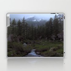So Peaceful... Laptop & iPad Skin