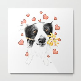 Border Collie And Hearts Metal Print