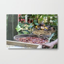 Balinese Spices Metal Print