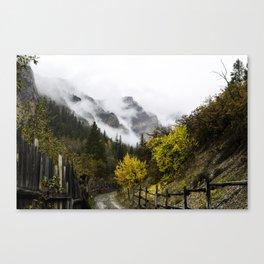 East Elk Creek Canvas Print
