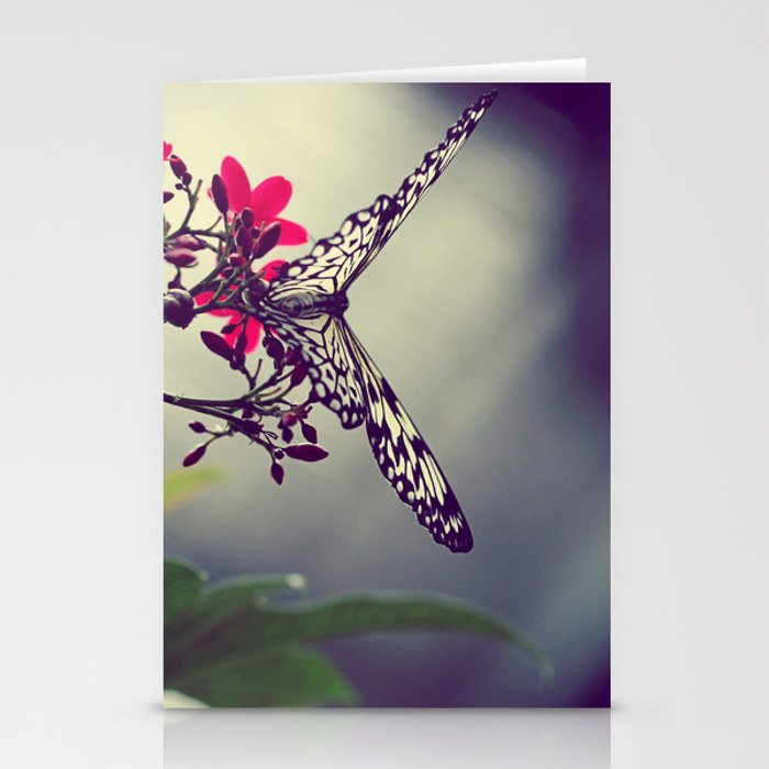 Butterfly in a Tree Stationery Cards