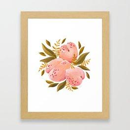 Peaches, Fruit Illustration, Gouache Painting Framed Art Print