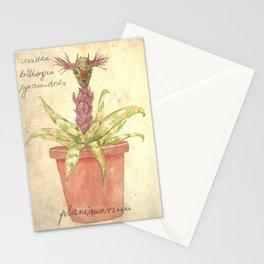 Planimarium - crevidea billbergia pyramidalis Stationery Cards