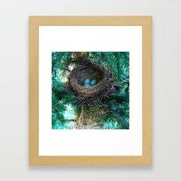 Robins Nest Framed Art Print
