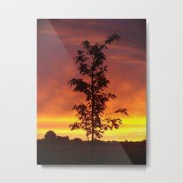 Abendrot  Metal Print