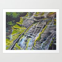 Catawba Falls Art Print