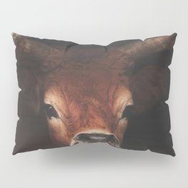 Rusty Pillow Sham