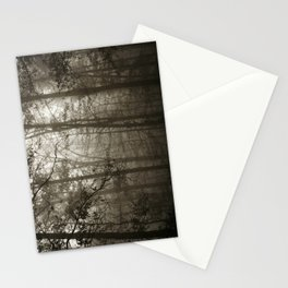 Foggy Woods Stationery Cards