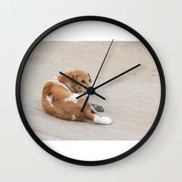 street dog Wall Clock