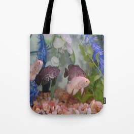 Two Black and Two White Oscars in an Aquarium Tote Bag