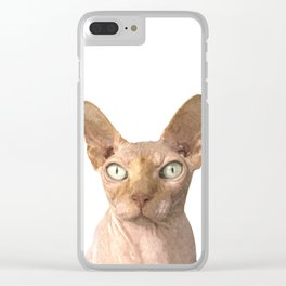 Sphynx cat portrait Clear iPhone Case