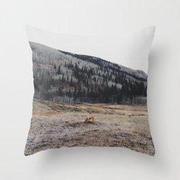 Silverton Fox Throw Pillow