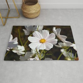 White Cosmo Daisies Flowers Rug