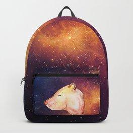 Gamma Backpack