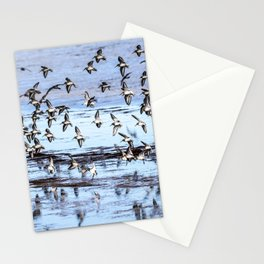 A gaggle of sandpipers fly over glassy water Stationery Cards