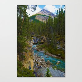Beauty Creek in Jasper National Park, Canada Canvas Print