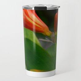 Clivia miniata Travel Mug