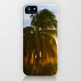 Palmtree in golden sunset - Guadeloupe iPhone Case
