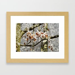 Frosted Leaves Framed Art Print