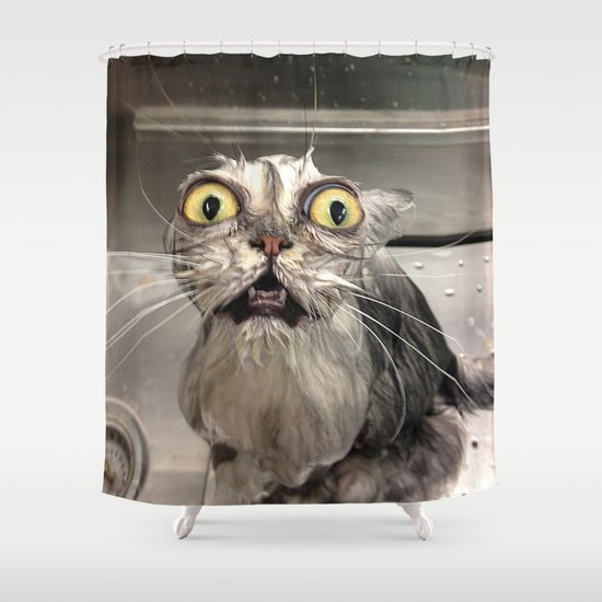 Reddit wet cat shower curtain by kittyhatesit society6 for Bathroom ideas reddit