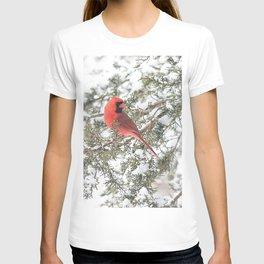 Cardinal on a Snowy Cedar Branch (v) T-shirt