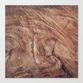 wood_tree Canvas Print
