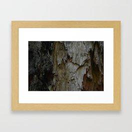 Kings Canyon Tree no.3 Framed Art Print