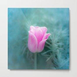 Pink Blossom Tulip Metal Print