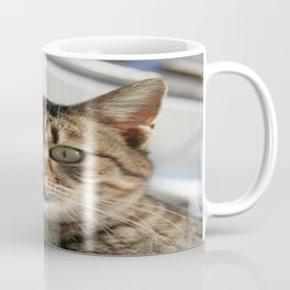 Beautiful Eyed Tabby Cat  Coffee Mug