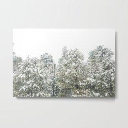 Lapse of Snow Metal Print