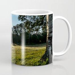 Country Comfort / Tree Swing Coffee Mug
