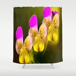Colorful violets  - beauties of nature - #Society6 - #Buyart Shower Curtain
