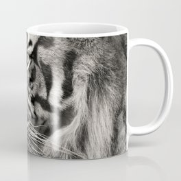 The mysterious eye of the tiger. BN Coffee Mug